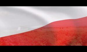 Selçuk Bayraktar;BayraktarTB2 SİHA'lar Polonya Ordusu'nun envanterinde Avrupa semalarında görev yapacak.